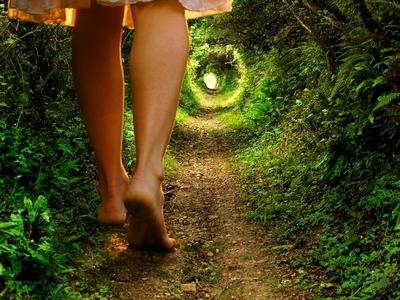 a-new-path
